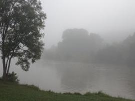 And Fog on the river during my morning walk